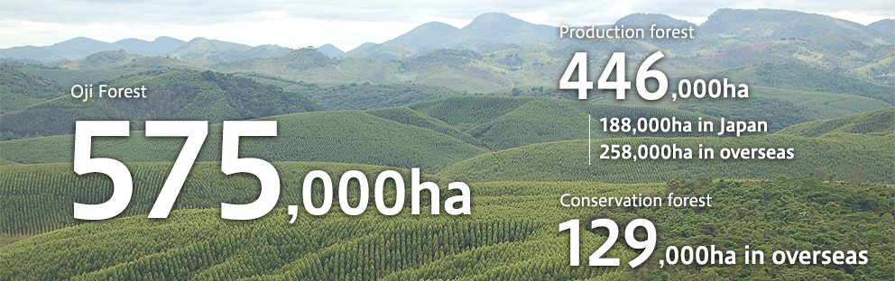 Oji Forests 570,000ha, Production Forests 441,000ha, Conservation Forests 129,000ha